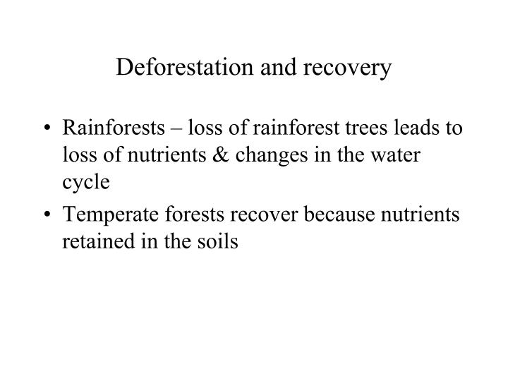 Deforestation and recovery