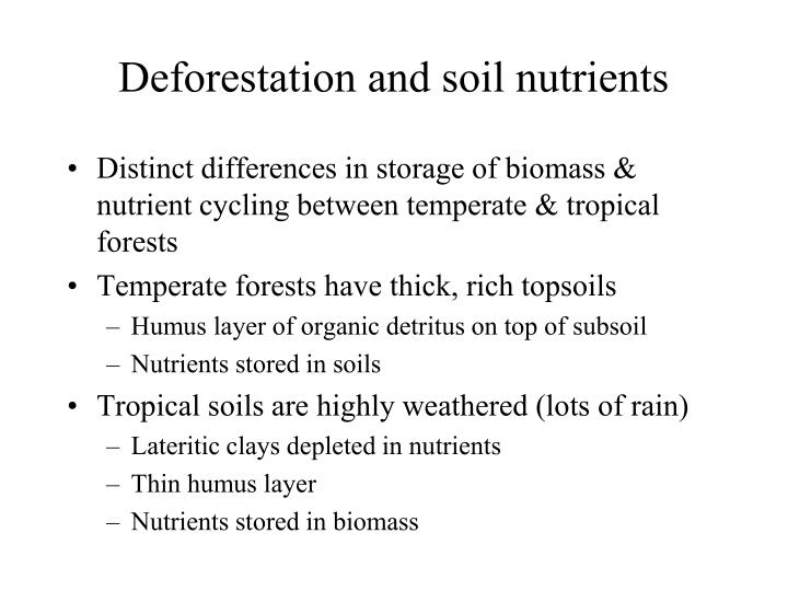Deforestation and soil nutrients