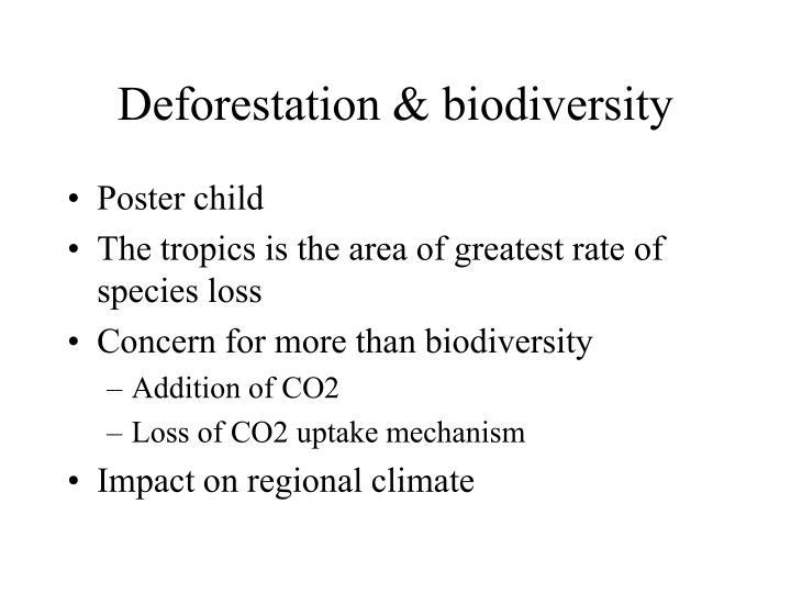 Deforestation & biodiversity