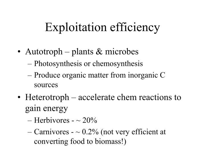 Exploitation efficiency