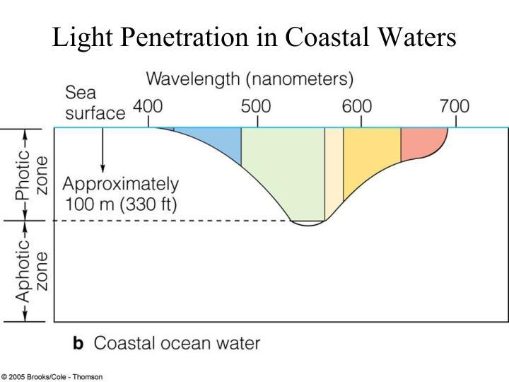 Light Penetration in Coastal Waters