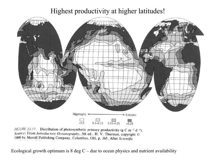 Highest productivity at higher latitudes!