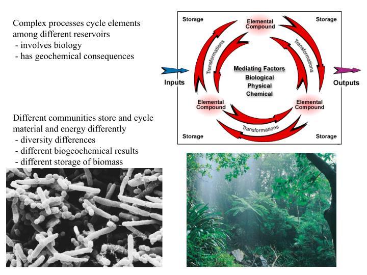 Complex processes cycle elements