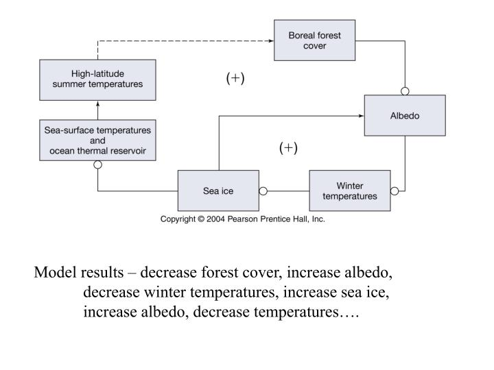 Model results – decrease forest cover, increase albedo,