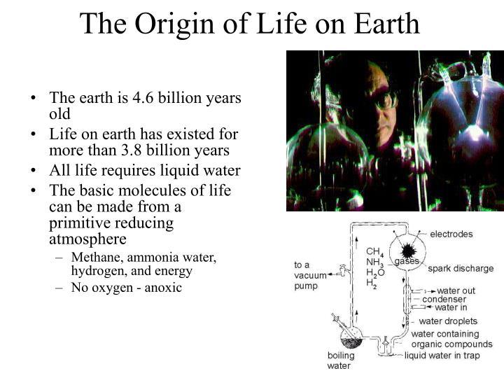 The Origin of Life on Earth
