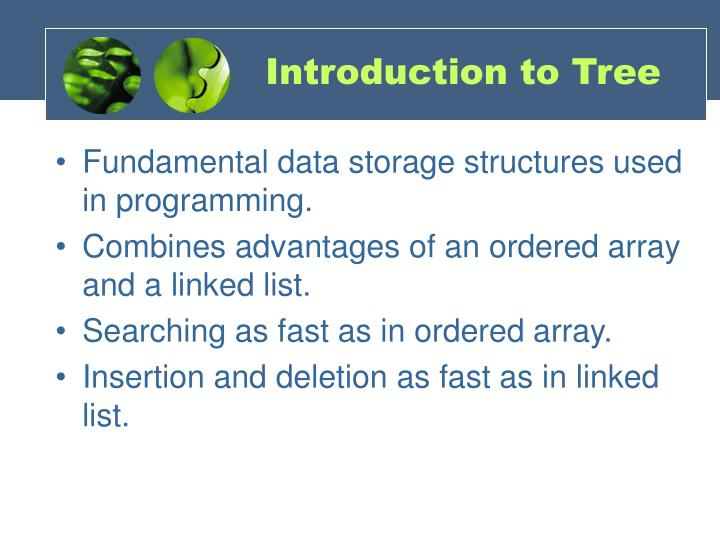 Introduction to Tree