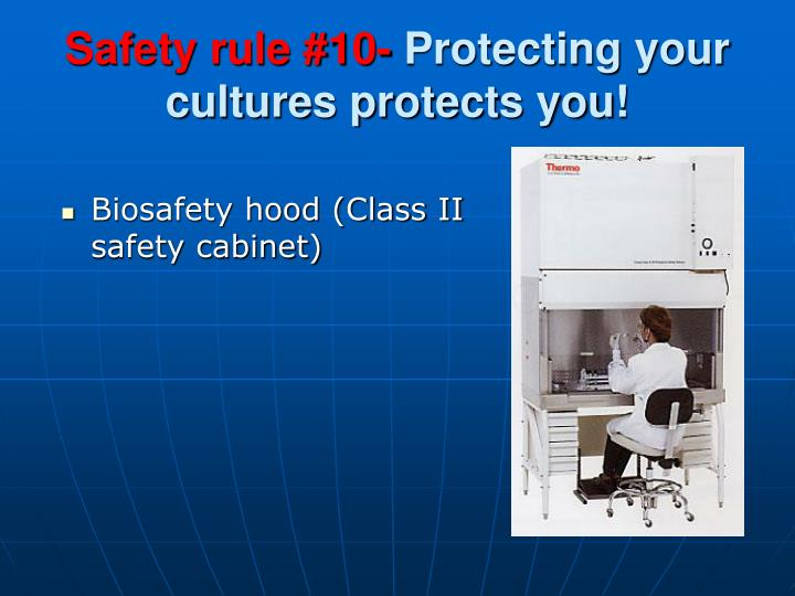 Safety rule #10-