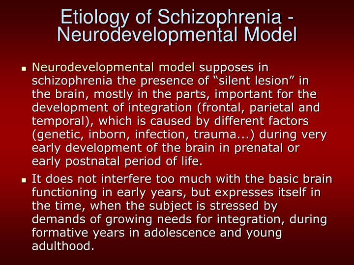 Etiology of Schizophrenia - Neurodevelopmental Model
