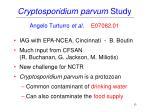 cryptosporidium parvum study