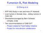 fumonisin b 1 risk modeling