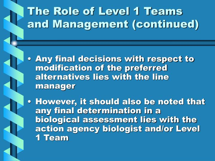 The Role of Level 1 Teams and Management (continued)