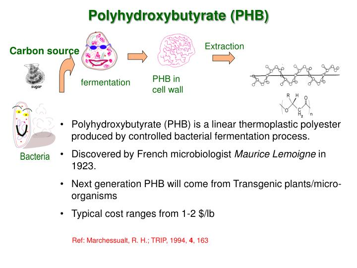 Polyhydroxybutyrate (PHB)