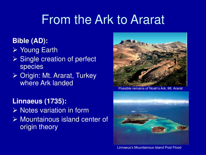 From the Ark to Ararat