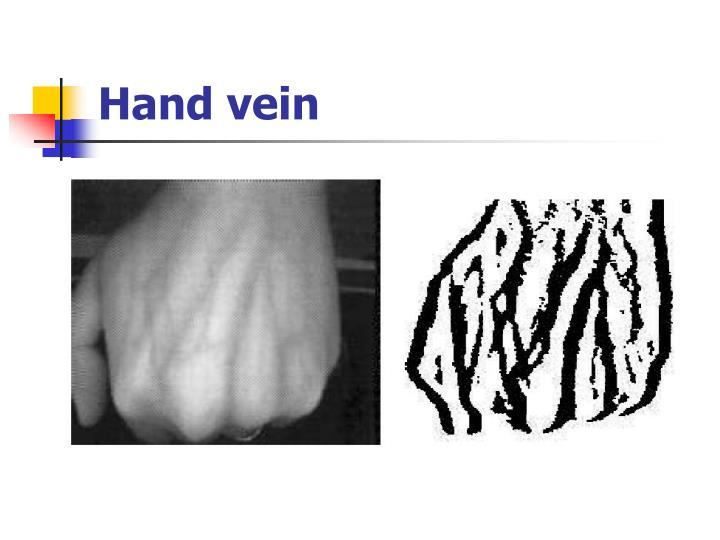 Hand vein