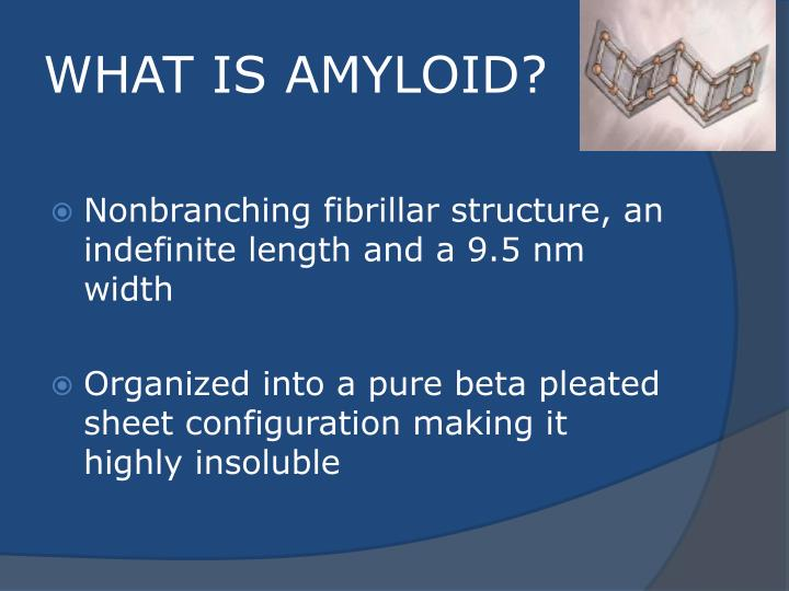 WHAT IS AMYLOID?