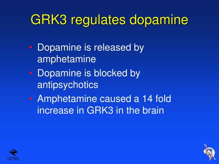 GRK3 regulates dopamine