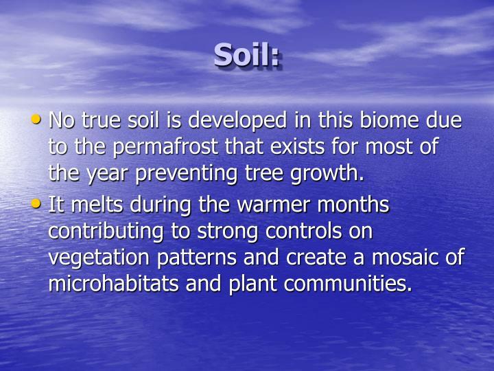 Soil: