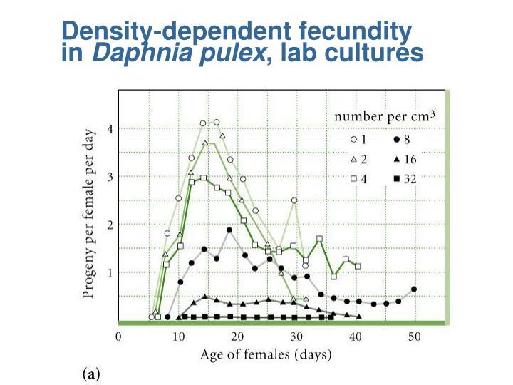 Density-dependent fecundity    in