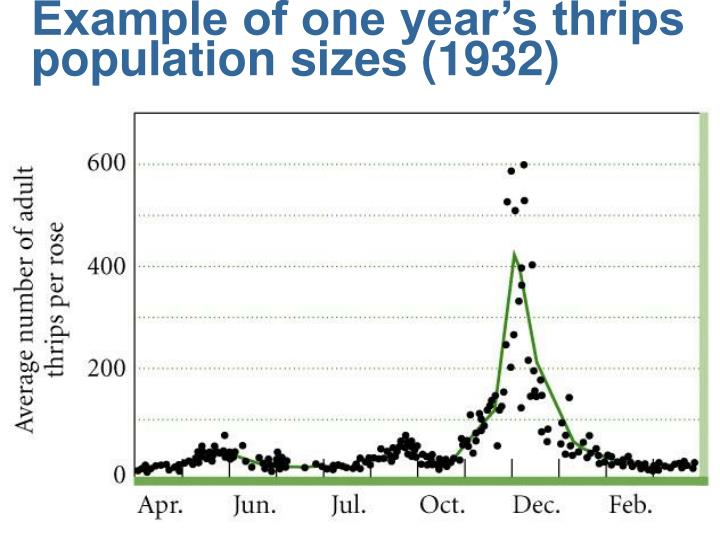 Example of one year's thrips population sizes (1932)