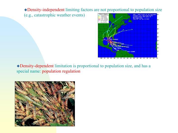 Density-independent