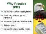 why practice ipm