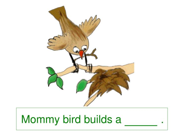 Mommy bird builds a             .