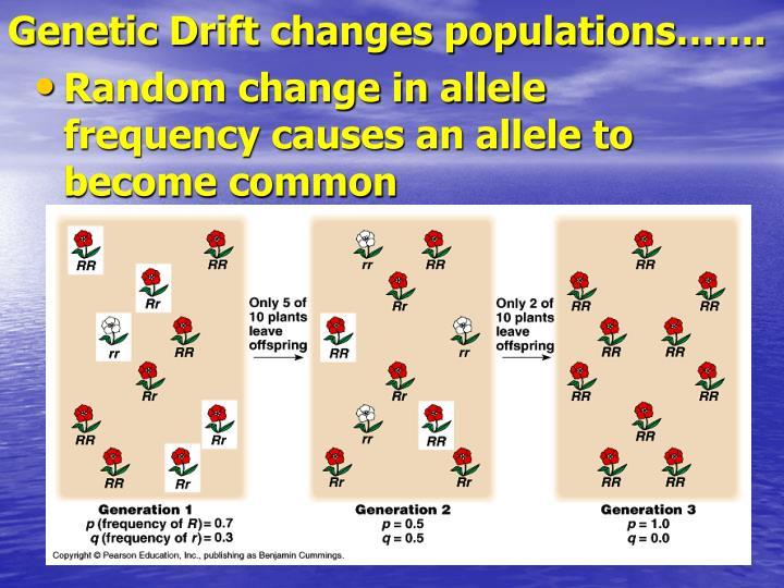 Genetic Drift changes populations…….