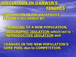 speciation in darwin s finches