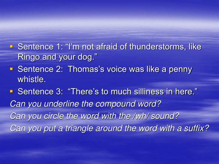 "Sentence 1: ""I'm not afraid of thunderstorms, like Ringo and your dog."""