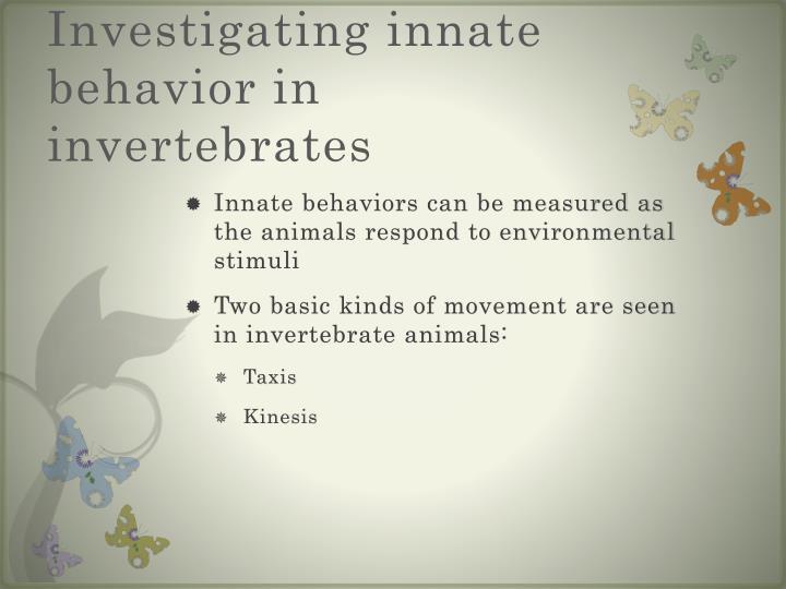 Investigating innate behavior in invertebrates