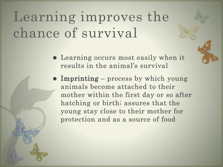 Learning improves the chance of survival