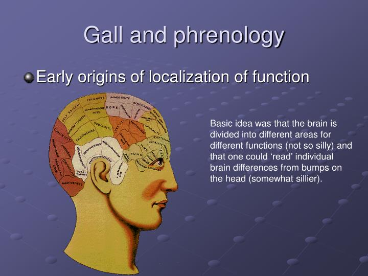 Gall and phrenology