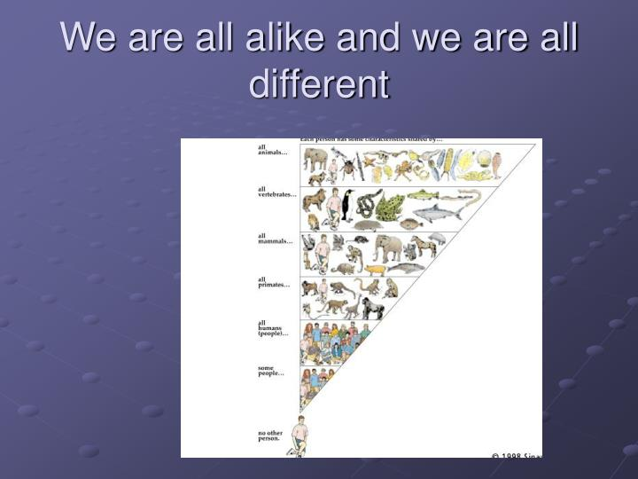 We are all alike and we are all different