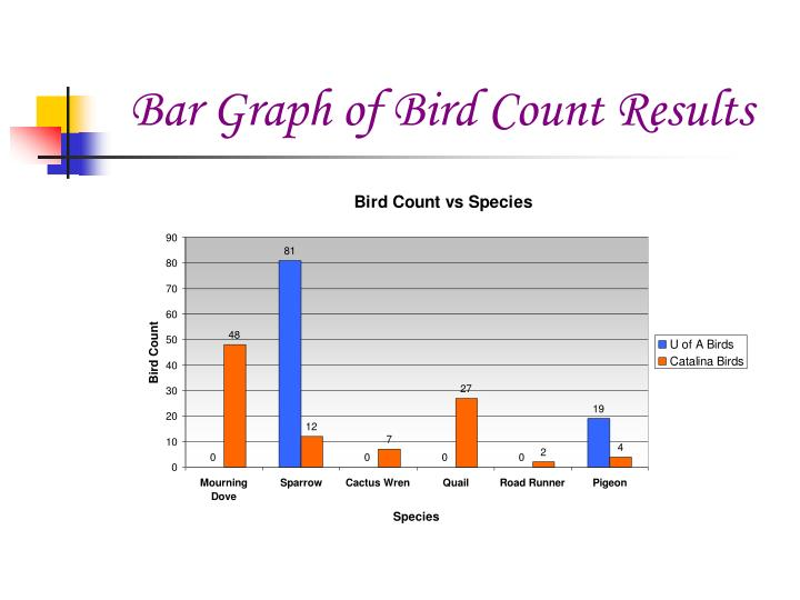Bar Graph of Bird Count Results