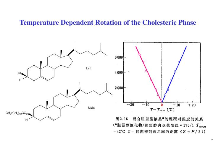 Temperature Dependent Rotation of the Cholesteric Phase