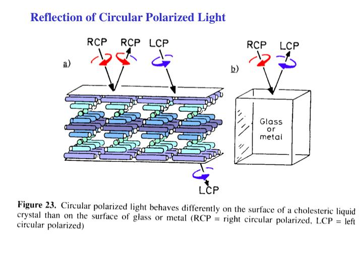 Reflection of Circular Polarized Light