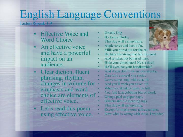 Effective Voice and Word Choice