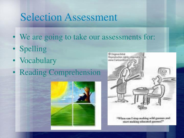 Selection Assessment