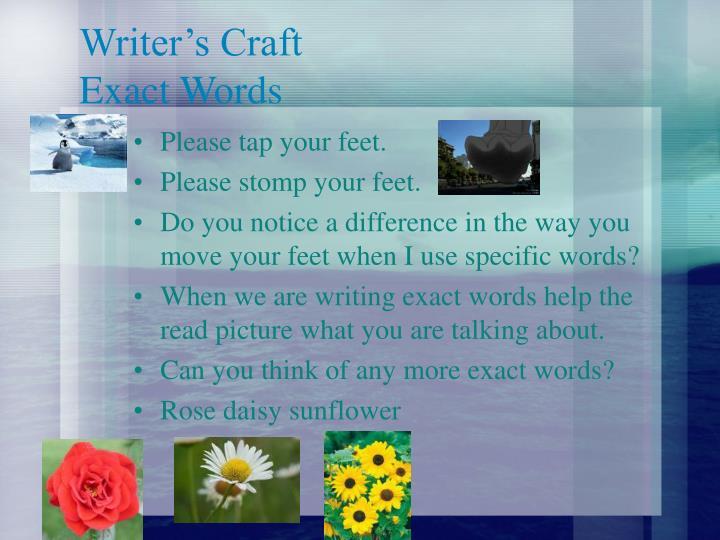 Writer's Craft