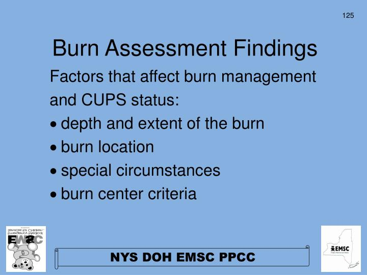 Burn Assessment Findings
