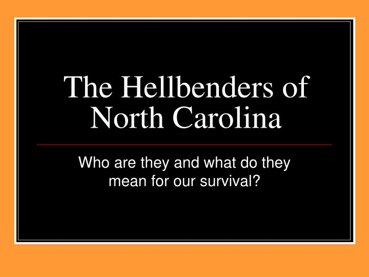 the hellbenders of north carolina