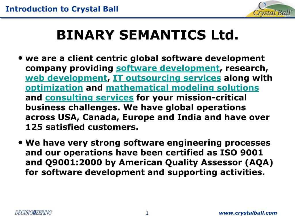 BINARY SEMANTICS Ltd.