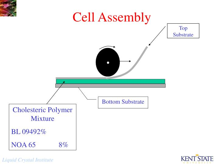 Cell Assembly