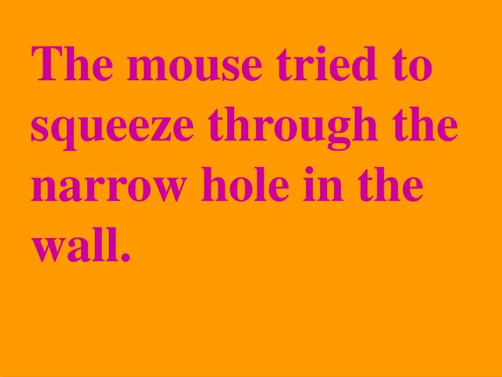 The mouse tried to squeeze through the narrow hole in the wall.