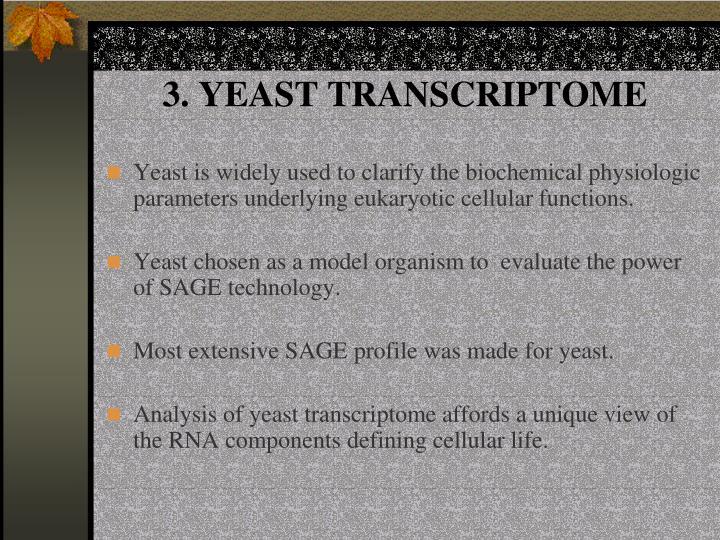 3. YEAST TRANSCRIPTOME