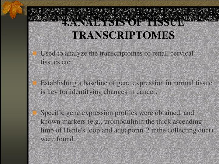 4.ANALYSIS OF TISSUE TRANSCRIPTOMES
