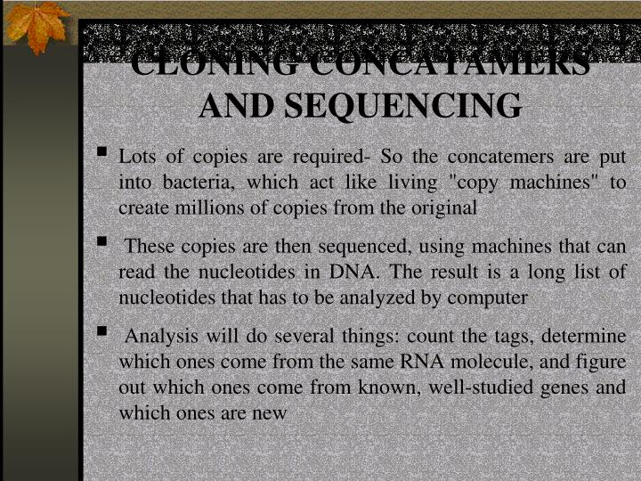 CLONING CONCATAMERS AND SEQUENCING