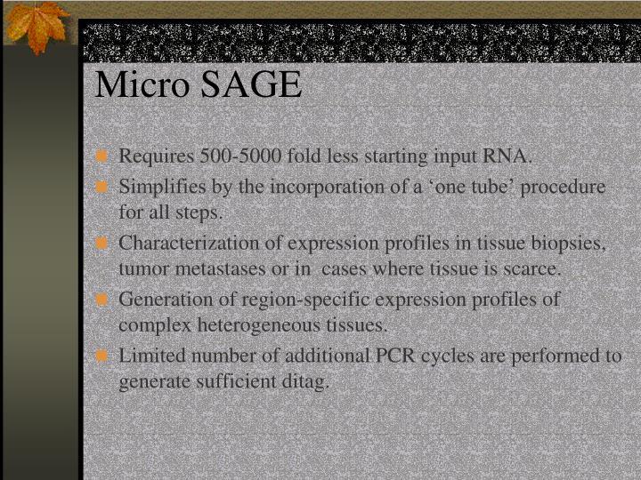 Micro SAGE