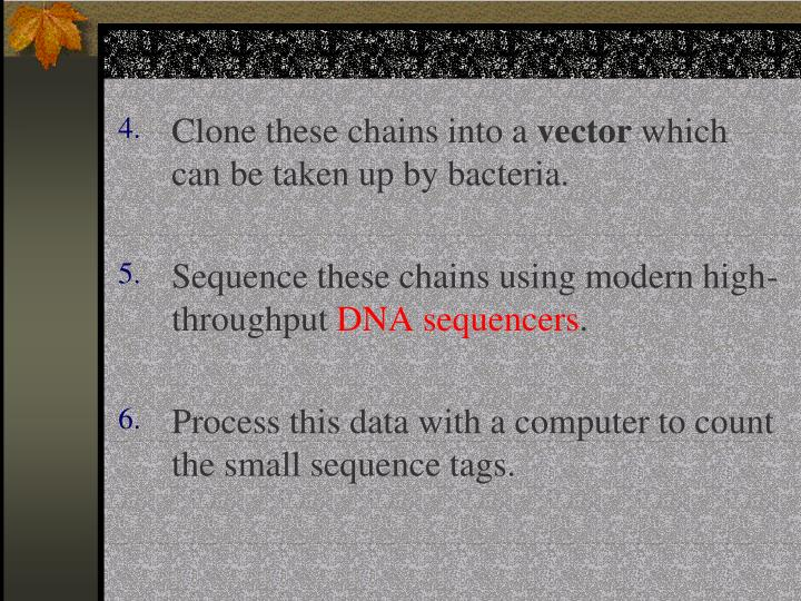 Clone these chains into a