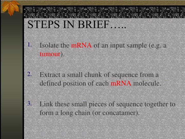 STEPS IN BRIEF…..